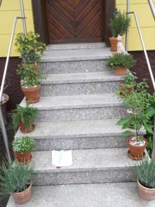 straehle-natursteine-produkte-treppe